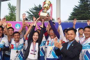 Du học sinh Việt tại Hàn tranh tài tại đại hội thể dục thể thao