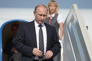 TT Putin sẵn sàng gặp lãnh đạo Kim, mong muốn giúp Triều Tiên phát triển