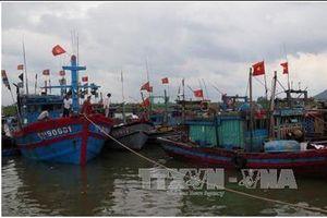 Các tỉnh, thành phố Bắc Bộ và Bắc Trung Bộ chủ động đối phó với bão số 4
