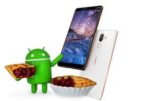 Toàn bộ điện thoại thông minh Nokia sẽ được cập nhật Android 9 Pie