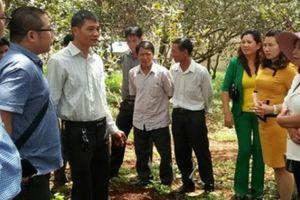ĐHND Bình Phước lần thứ IX: Đổi mới hoạt động, nông dân được lợi
