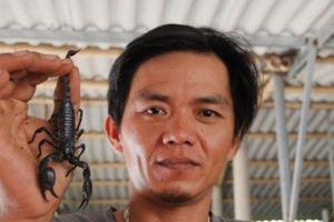 Làm giàu ở nông thôn: 8X nuôi loài chết sớm, lãi 30 triệu/tháng