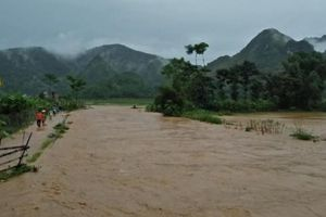 Sơn La: Mưa lớn gây lũ quét cuốn trôi hoa màu, tài sản của dân