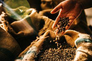 Giữa thế giới ẩm thực, nghĩ về chữ cà phê 'Việt'
