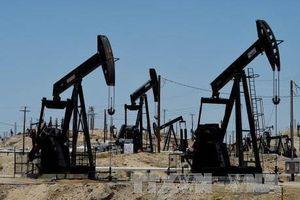 Giá dầu châu Á nhích lên