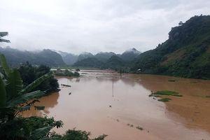 Sơn La: Mưa lớn thiệt hại nhiều hoa màu của người dân