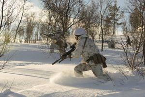 Na Uy định tăng gấp đôi lính Mỹ gần biên giới Nga, Matxcơva cảnh báo hậu quả