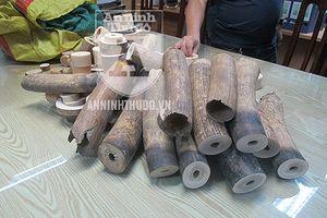 Hà Nội: Thu giữ 179kg vật phẩm nghi là ngà voi ở Thường Tín