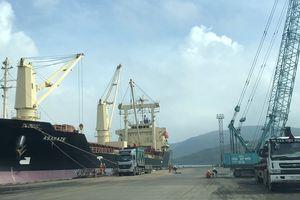 Thương vụ bán cảng Quy Nhơn: Người viết 'tâm thư' lên tiếng