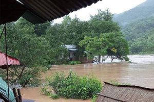 Nhiều huyện của Nghệ An chìm sâu trong nước