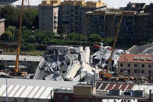Chính phủ Italy điều tra công ty vận hành chiếc cầu cạn bị sập