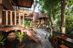 Ngôi nhà được xây dựng sau 30 năm chờ đợi một khu rừng nhỏ mọc lên