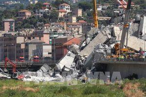 Vụ sập cầu cạn tại Italy: Nhà thầu Autostrade per l'Italia sẽ bị thu hồi giấy phép