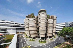 Giáo dục Châu Á vinh dự đón thêm 2 trường Đại học của Trung Quốc và Singapore lọt top 100 trường tốt nhất thế giới
