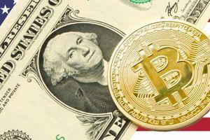 Giá Bitcoin hôm nay 17/8: Thị trường tiền ảo khởi sắc