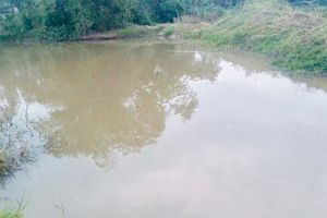 Cặp vợ chồng xuống hồ cứu 2 học sinh, cả 4 người chết thương tâm