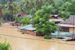 Nghệ An: 5 người chết sau bão số 4