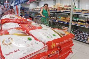 Nguy cơ thâm hụt thương mại Việt Nam – Thái Lan ngày càng lớn: Lo ngại dần đi là vừa