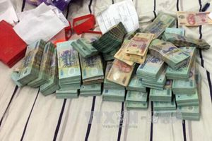 Cần Thơ khởi tố Đội trưởng Thanh tra giao thông về hành vi đánh bạc