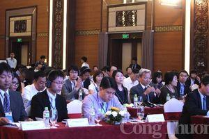 Doanh nghiệp Nhật Bản tìm kiếm cơ hội hợp tác kinh doanh tại Quảng Nam