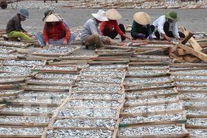 Cá hấp phơi khô Gio Linh được thị trường ưa chuộng