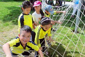 Xây dựng mạng lưới bảo vệ trẻ em từ cơ sở