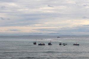 Nghiệp đoàn nghề cá An Hải: Khai thác đạt gần 10.000 tấn hải sản, trị giá trên 29 tỷ đồng
