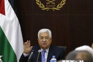 Palestine dọa xem xét lại tất cả thỏa thuận hòa bình với Israel