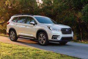 Lỗi phần mềm robot khiến Subaru phải tiêu hủy nhiều xe SUV Ascent