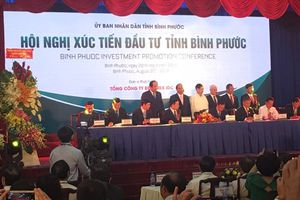 Thủ tướng Nguyễn Xuân Phúc: 'Doanh nghiệp được cấp phép đầu tư không để dự án nằm trên giấy'