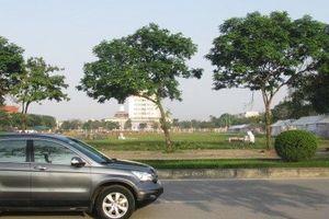 Kiểm tra việc đấu giá quyền thuê đất tại khu hành chính tập trung tỉnh Hải Dương