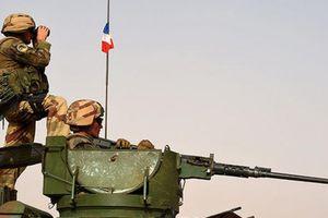 Anh 'nổi đóa' vì mất tiền oan khi giúp Pháp đánh khủng bố