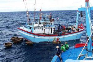 Câu cá ngừ, thuyền viên 23 tuổi bị cá 'đớp' đứt bàn tay