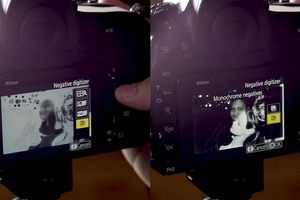 'Số hóa' tiêu bản film bằng máy ảnh Nikon D850