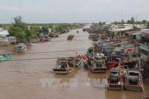 Dự báo 2-3 ngày tới, mực nước đầu nguồn sông Cửu Long biến đổi chậm