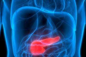 Ung thư tuyến tụy, căn bệnh giết chết nhiều vĩ nhân trên thế giới