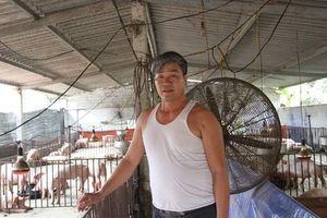 Ngôi làng cứ nuôi vật 4 chân là lăn đùng ra chết ở Bắc Giang giờ ra sao?