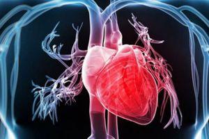 Y học tái sinh giúp phục hồi đến 70% các bệnh lý tim mạch