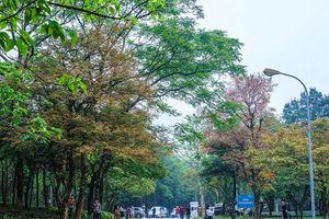 Top 6 điểm đi chơi ngày lễ 2/9 lý tưởng ở Việt Nam