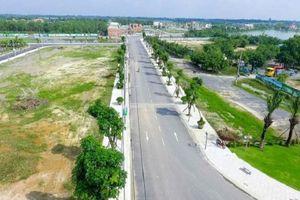 TP. HCM có thêm 35 dự án chuyển đổi từ 2.000ha đất trồng lúa