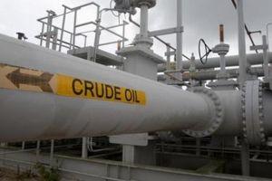 Giá dầu thế giới đảo chiều đi lên trong phiên 20/8