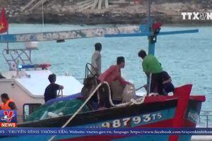 Cứu 10 thuyền viên gặp nạn trên biển sau gần 20 giờ
