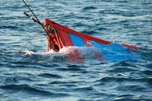 Tàu cá Bình Định: bị đâm chìm trên biển do tàu lạ chưa rõ tung tích