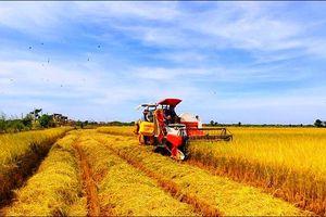 Cách mạng 4.0: Thời cơ 'vàng' cho nông nghiệp Việt Nam