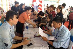 TP Hồ Chí Minh: Gần 2.000 người được hỗ trợ tìm việc làm