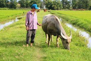 Chấm dứt việc thu phí 'lạ' ở Quảng Bình và trả lại tiền cho dân