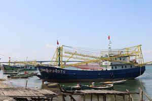 Ngư dân Quảng Nam 'quay lưng' Nghị định 17