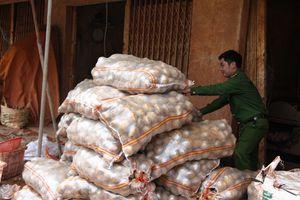 Phát hiện thêm cơ sở biến khoai tây Trung Quốc thành hàng Đà Lạt