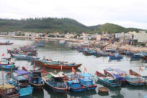 Quảng Ngãi: Huyện đảo Lý Sơn phấn đấu khai thác đạt 40.000 tấn hải sản năm 2018