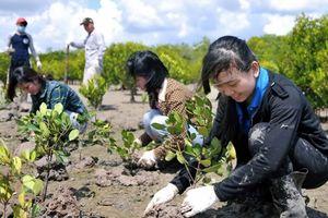 Phân bổ vốn ứng phó với biến đổi khí hậu và tăng trưởng xanh